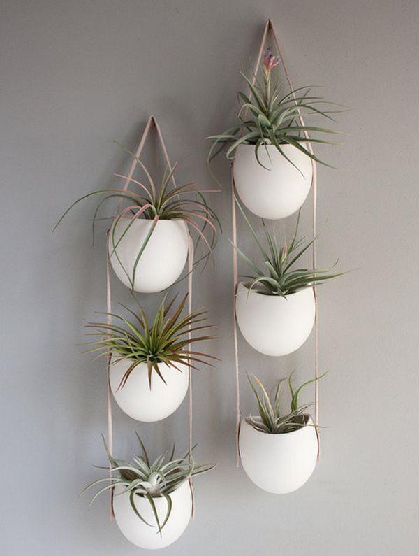 hängende blumentöpfe zimmerpflanzen luftige sukkulenten wand deko