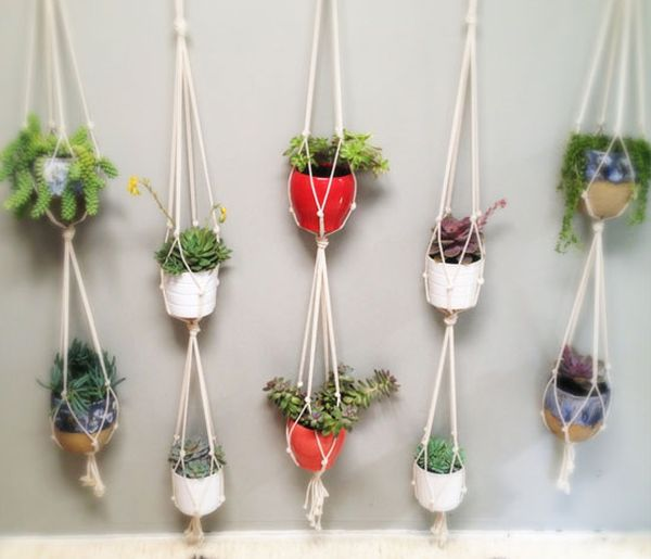 hängende blumentöpfe zimmerpflanzen wanddeko farbig