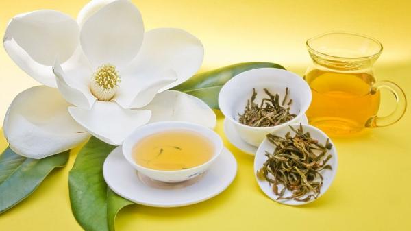 kaffee oder tee trinken tasse blume kräuter gesund grün