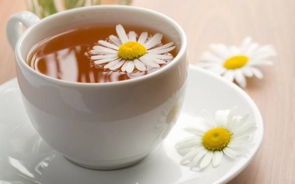 kaffee oder tee trinken tasse blume kräuter gesund