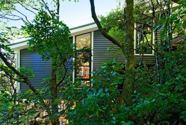 modernes designer haus natur bäume grüne fenster