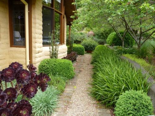 nachhaltiger garten sukkulenten in violett