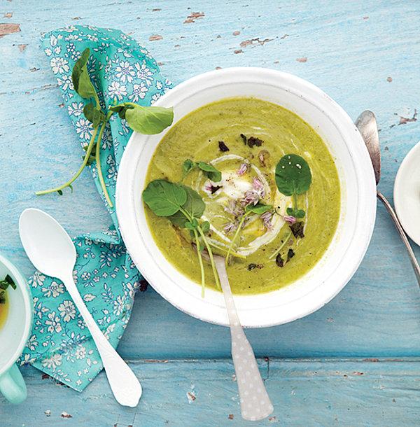 stilvolle dekoideen creme suppe mit grünen blättern