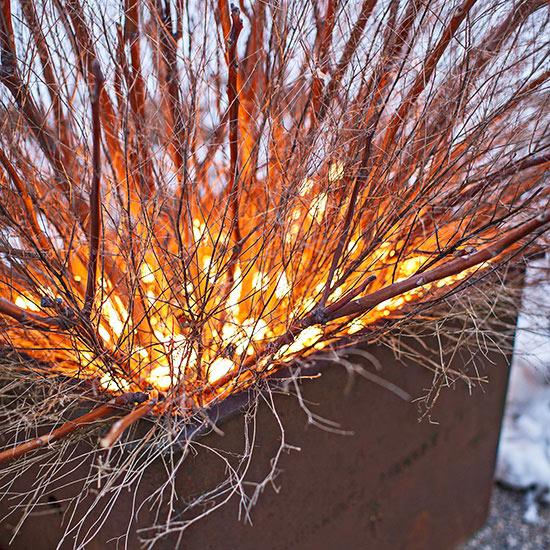 weihnachten außendekoration strauch mit lichterketten