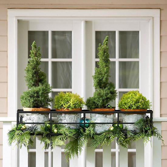 weihnachten verzierung ornamente immergrün bäume pflanzen fenster