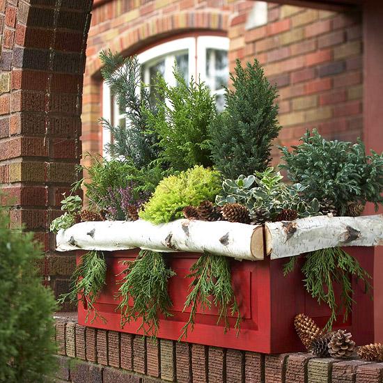 weihnachten verzierung ornamente immergrün pinienzapfen holz