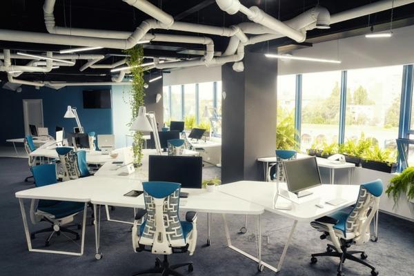Attraktives Büro wie ein Raumschiff eingerichtet pflanzen