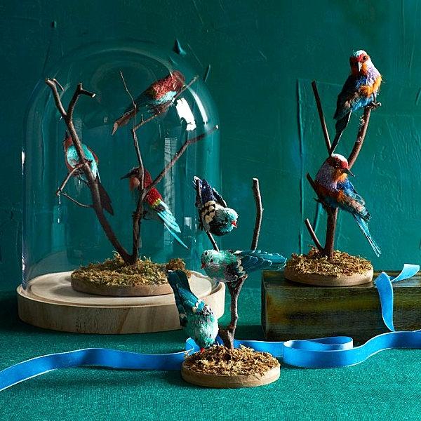 Eklektische Inneneinrichtung vogel dekoration menagerie tierschau