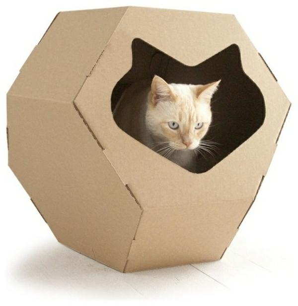 Modernes Zubehör für Ihre Haustiere wiederverwendet karton