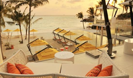 beach resort Niyama Fahrenheit exotisch palmen umgebung natur