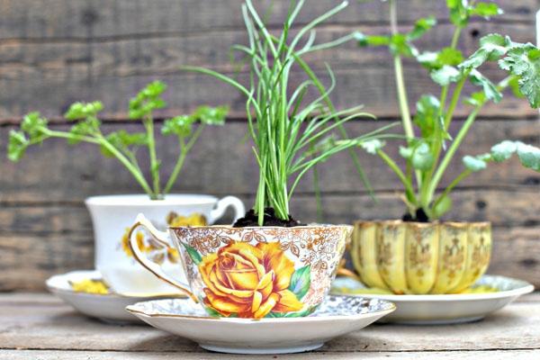 blumentöpfe herrlich bemalte tee tassen