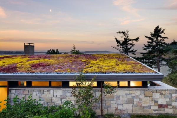 dachbegrünung bunt in gelb und violett