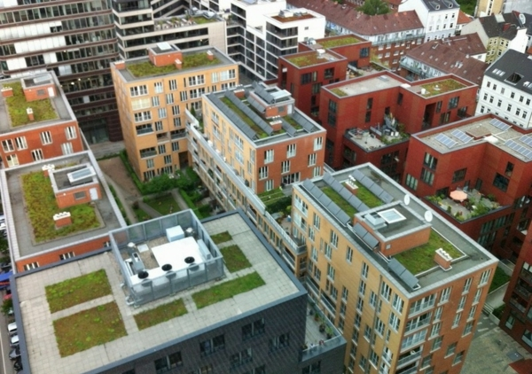 dachbegrünung-hochhäuser-mit-grünen-dächern