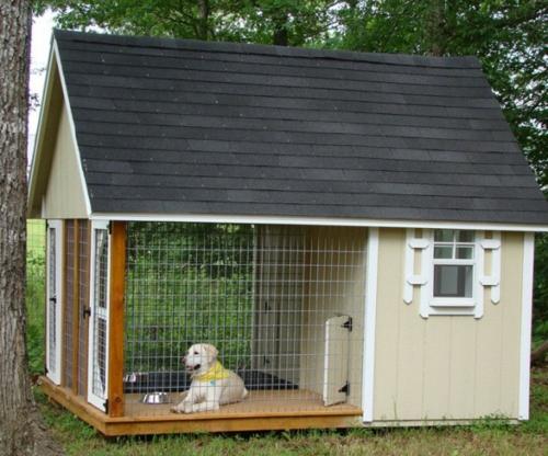 Luxus Hundeh Tte Designs Tierfreundlich Und Praktisch