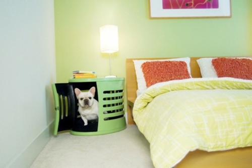 Luxus hundeh tte designs tierfreundlich und praktisch for Luxus wohnung design