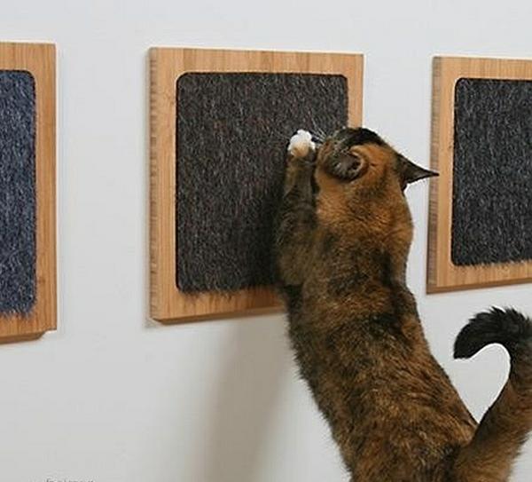 Modernes Zubehör Für Ihre Haustiere Schmierblock