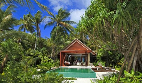 ozean palmen Niyama beach studio flitterwochenreise