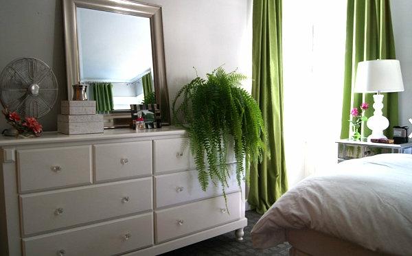 traditionell schlafzimmer erfrischend grüne das interieur mit farben bedecken