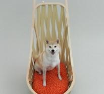 Architektur für Hunde – eigenartige Betten, Hundehütten und Spielgeräte