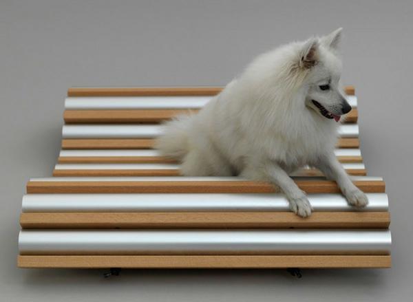 Hunde originell ausgedacht sitzbank Architektur