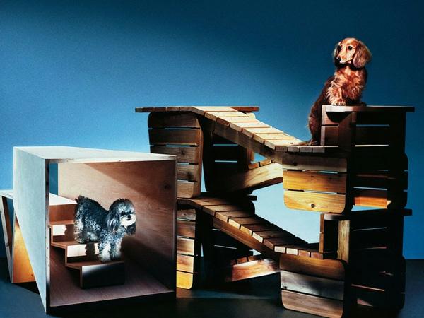 Hunde originell ausgedacht tierspiele Architektur