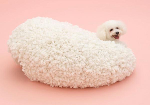 Hunde originell ausgedacht weich decke weiß geeignet Architektur