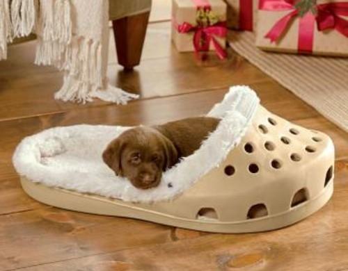 Cooles-Hundebett-in-Form-von-einem-Schuh