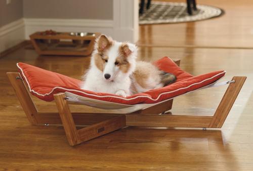 Cooles Hundebett  liege orange auflagen