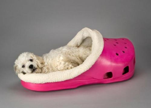 Cooles Hundebett in Form von einem Schuh schafpelz abnehmbar