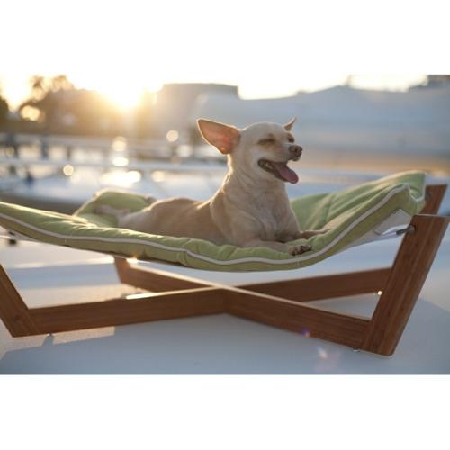 Cooles Hundebett  sonnenliege draußen patio