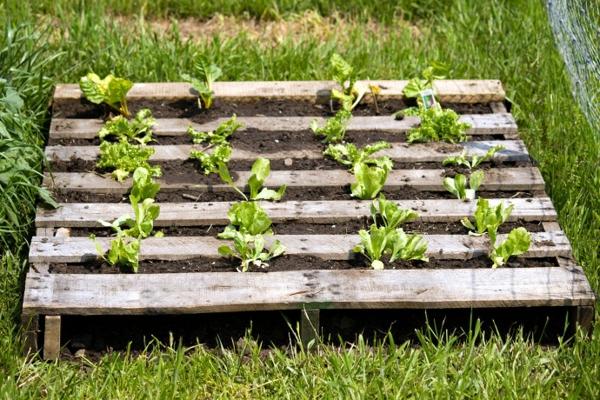 gartendeko mit holzpaletten, Hause und Garten