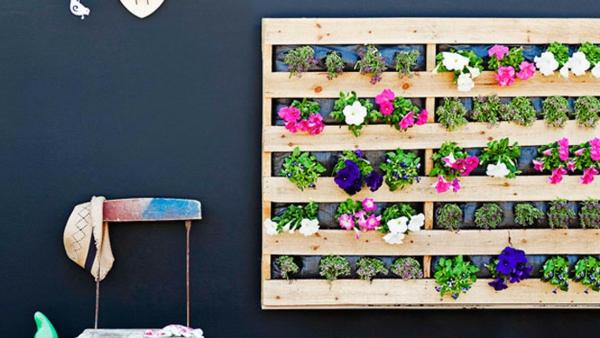 holz paletten recyceln pflanzen bunt blütten wand