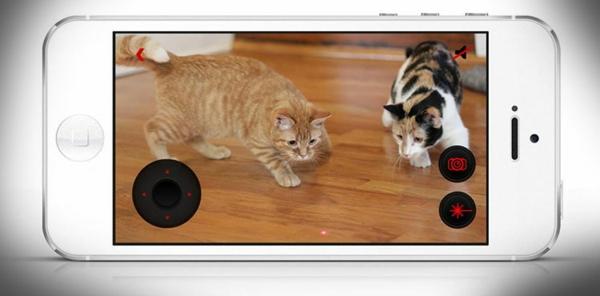Haustier per Ihrem Smartphone hund katze unterwegs