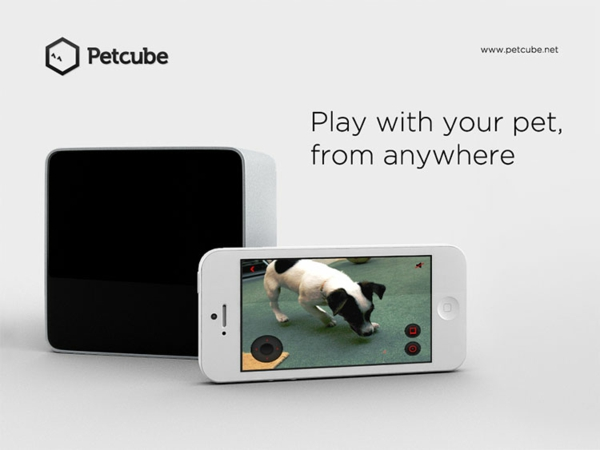 Haustier per Ihrem Smartphone hund unterwegs