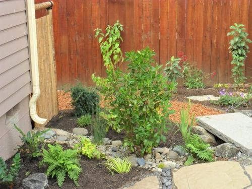 Lösungen für feuchte Erde hof garten gestaltung pflanzen