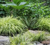 Gartengestaltung – 10 Lösungen für feuchte Erde