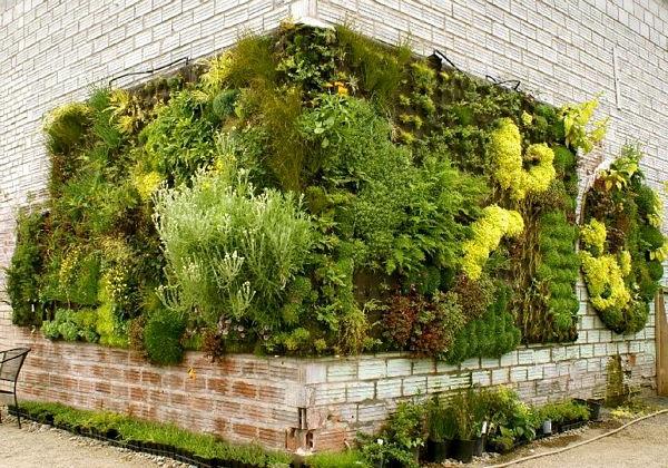 Vertikaler Garten gebäude fassade attraktiv