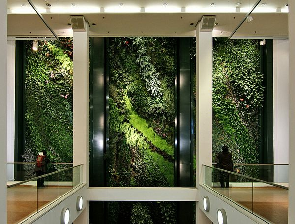 Vertikaler Garten gebäudegeländer treppe stadt