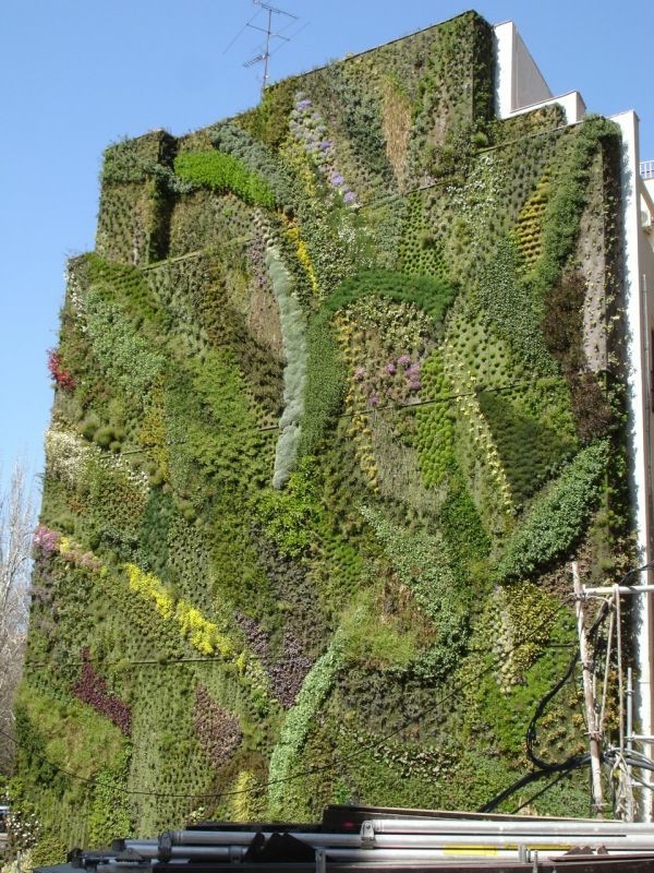 Vertikaler Garten gebäude stadt fassade kunst