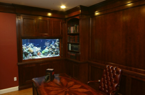 aquarium am arbeitsplatz beruhigende und sch ne dekoration. Black Bedroom Furniture Sets. Home Design Ideas