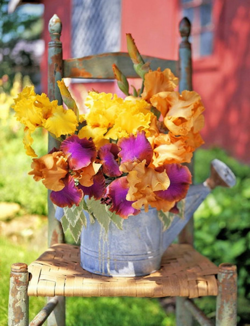 Vintage Blumentöpfe originell dekorativ gießkannen metall