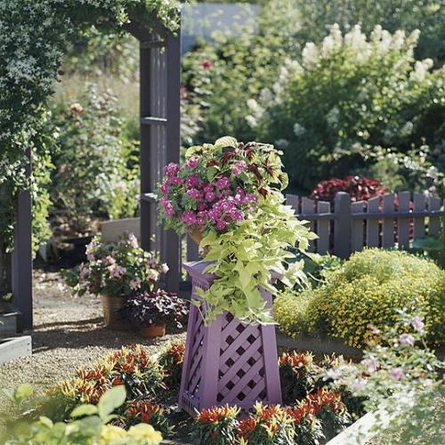 coole-Vintage-Blumentöpfe-originell-dekorativ