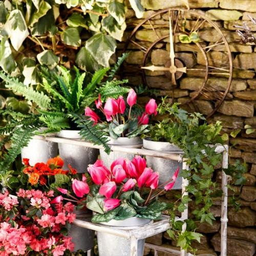 coole Vintage Blumentöpfe originell farbenprächtig blüten
