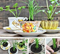 Bastelideen mit alten Teetassen
