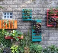 Coole DIY Projekte für die Wandbegrünung aus Paletten