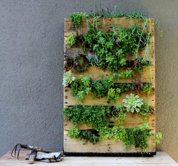 Wandbegr nung aus paletten coole diy projekte f r ihr - Diy pflanzenwand ...
