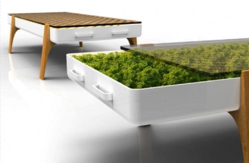 zimmerpflanzen möbel in hydrokultur tisch schubladen glasplatte