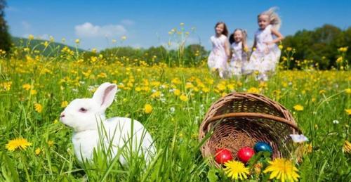 Die erzählung vom Osterhasen wiesen