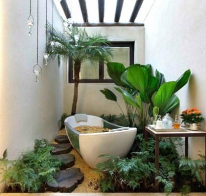 pflanzen im badezimmer die besten vorschlaege fuer sie