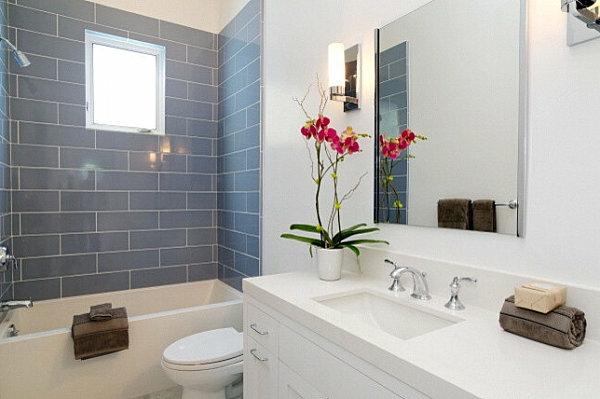 Pflanzen im Badezimmer badewanne spüle